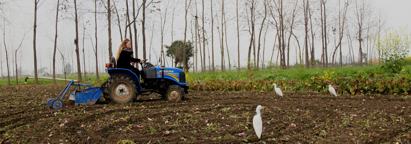 Organic farming & Tractor Ride at farmers villa